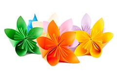 Illustration fleur kusudama